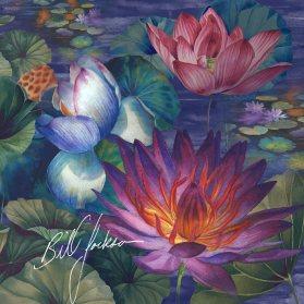 moonlit lily pond
