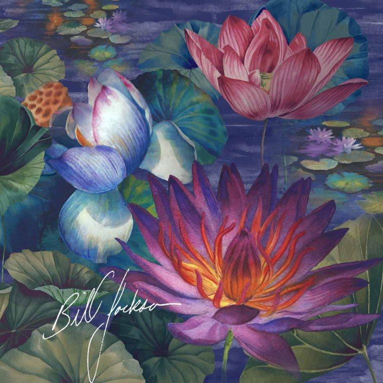 moonlit lily pond LR