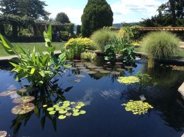 Wave Hill Water Garden