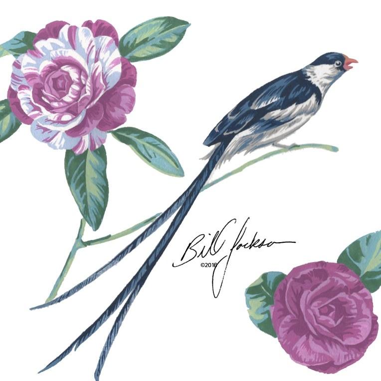 whydah & camellia